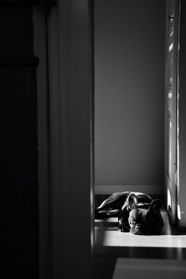 Noir_blanc3